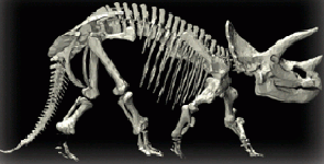 News Item: First Digital Dinosaur